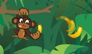 Monkey Brothers