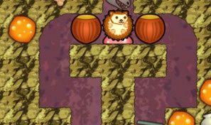Hedgehog Cute