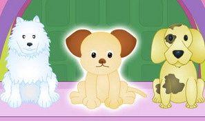 Original game title: Pet Caring Fun