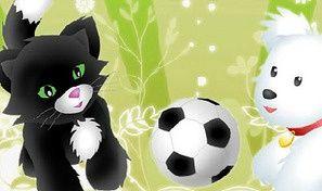 Pet Soccer