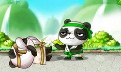 Chinese Panda KongFu 2
