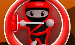 Ninja Painter 2