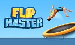 Flip Master