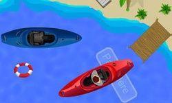Wild Boat Parking