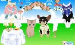 Pet Wedding Dress Up