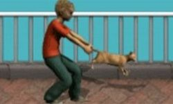 Kitty Throw