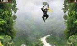 El Mono que Cae