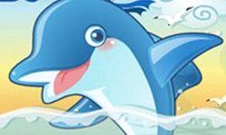 Dolphin Pop