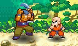 Dragonball Fighter
