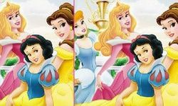 Disney Princess Differences