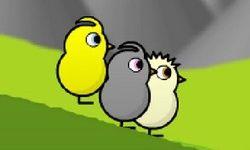 Ducklife 5