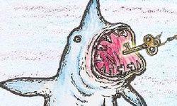 Shark's Key