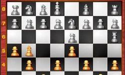 Шахматный маньяк