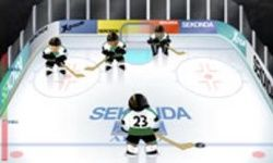 Tirs de Hockey sur Glace