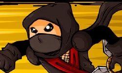 Ninja Vs. Zombi