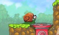 Snail Bob Puzzles