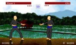 Поединок боевых искусств