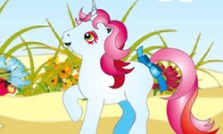 How Many Ponies Are