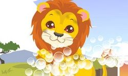 Perawatan Singa