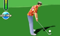 Goko Golf 3D