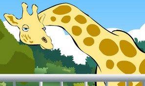 Original game title: Hidden Objects: Zoo
