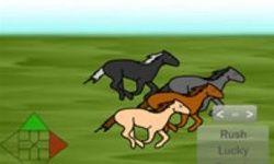 Wedden op Paarden