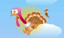 Turkey Plucker