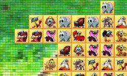 Zoo Matching