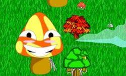 Mushroom Catcher