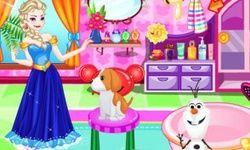 Elsa Adopt a Pet