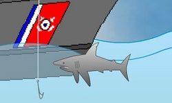 Survie des Requins