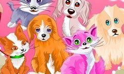 Pet Grooming Game