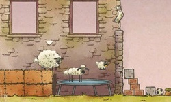 Homesheep Space