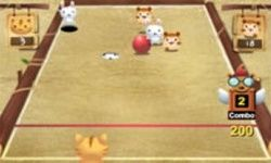 Katt Bowling