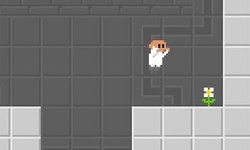 Tetris Labs