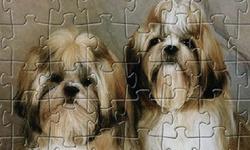 Dog Jigsaw