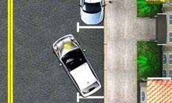 Auto Escola de Estacionamento