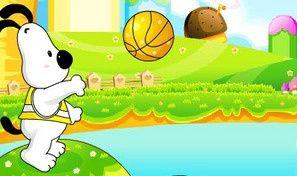 Basketdog