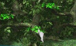Yetisports Jungle Swing