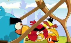 Angry Birds : Punition