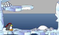 Polar Rescue