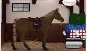 Horse Dress Up