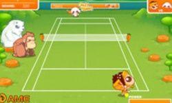 Crazy Tennis