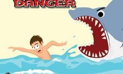 Surfing Danger