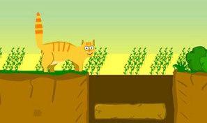 Orange Cat Adventure