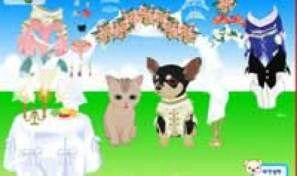 Original game title: Pet Wedding Dress Up