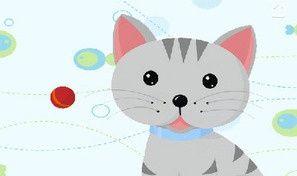 Cat's Yarn Bounce