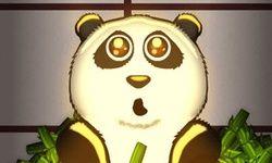 Panda Bulle