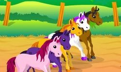 Jockey de Poneys
