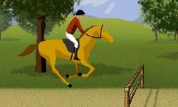Spring met het Paard Chestnut